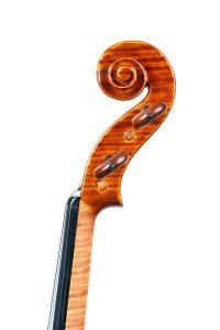 Violino Conia Testa